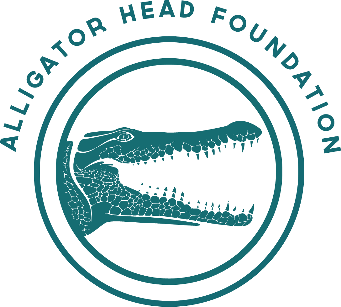 Alligator Head Foundation